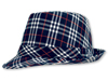 Blue and White Plaid Fedora