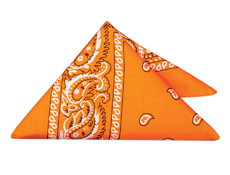 WP17H - Orange Bandannas